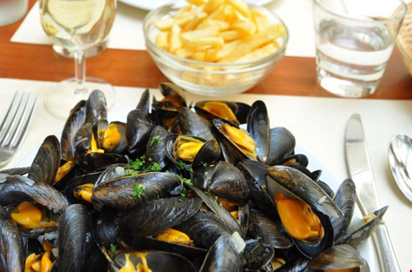 Taste the Best Mussels in Brussels