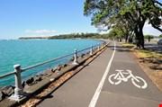 harbour-in-auckland-area-new-zealand-Harbour In Auckland Area New Zealand