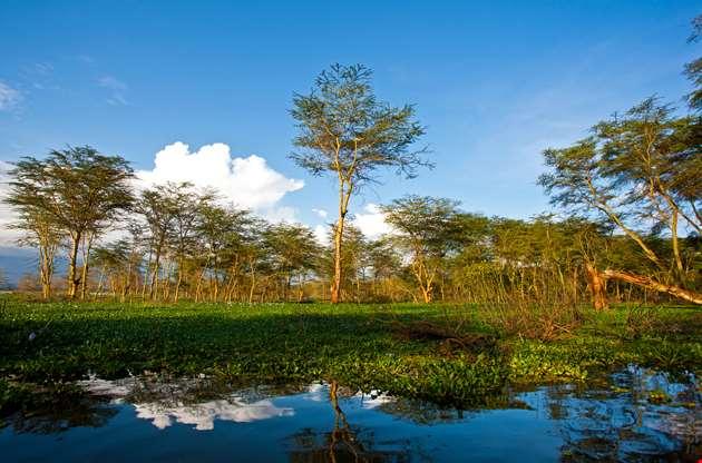 landscape-at-lake-naivasha-in-kenya-Landscape At Lake Naivasha In Kenya