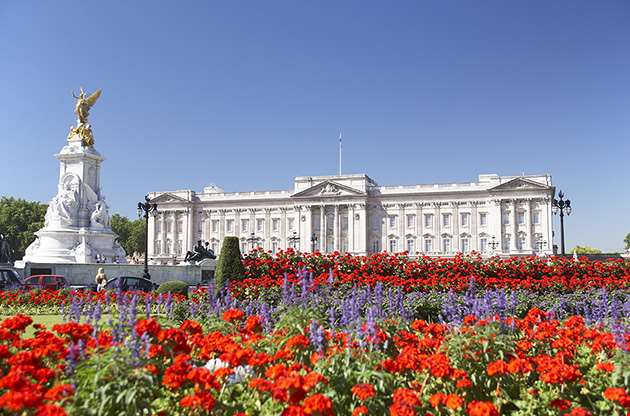 buckingham-palace-london-Buckingham Palace London