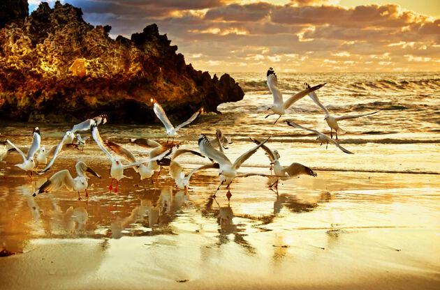 Two Rocks Sunset Perth Australia-Two Rocks Sunset Perth Australia