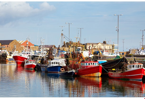Fishing Boats in Howth Harbor in Summer