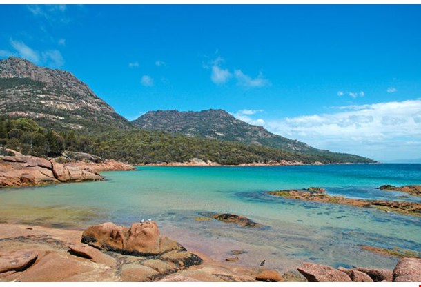 Tasmanian Coast Tasmania Australia
