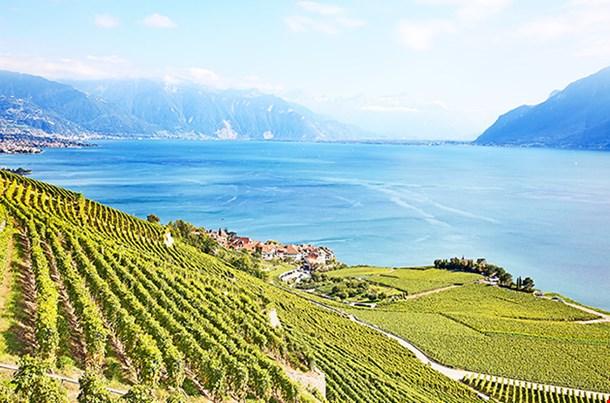 Vineyards of the Lavaux Region Over Lake Leman, (Lake Of Geneva)