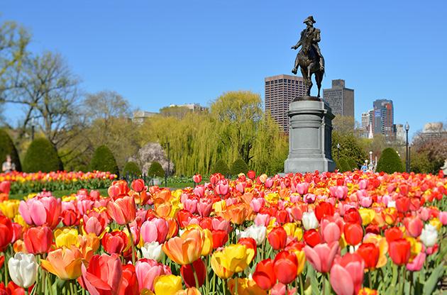 boston-public-garden-Boston Public Garden