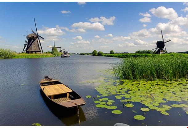 Windmill Landscape At Kinderdijk Near Rotterdam