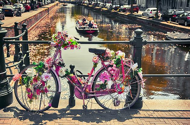 bike-by-bridge-in-the-hague-Bike By Bridge In The Hague (Den Haag)