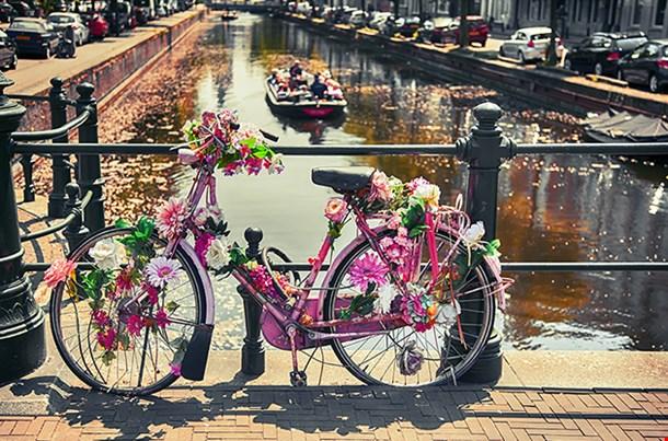 Bike By Bridge In The Hague (Den Haag)