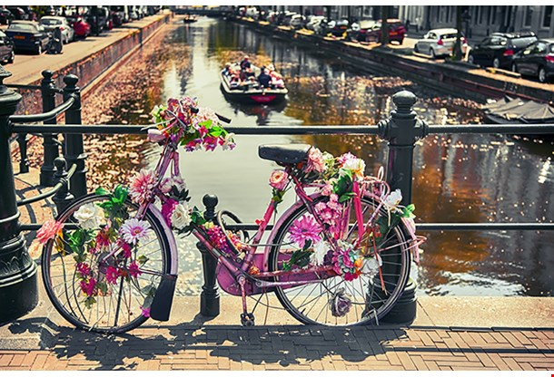 Bike By Bridge In The Hague (Den Haag)