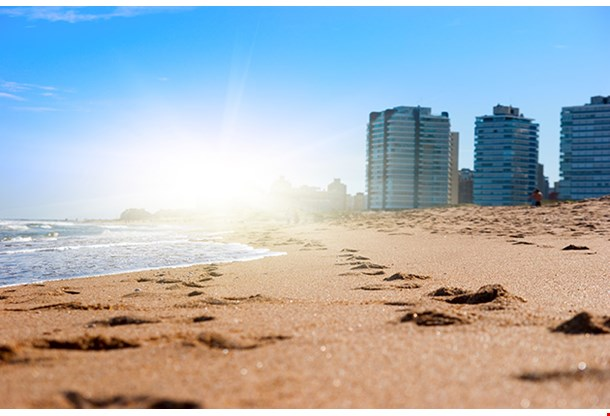Golden Sand On Sunny Beach Of Atlanctic Ocean Montevideo