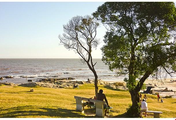 Montevideo Beach In Summer
