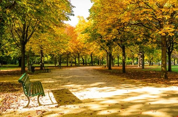 Tiegarten Berlin