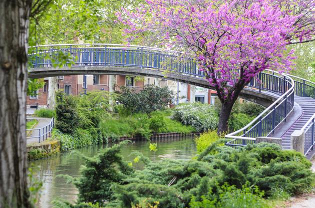 the-canal-du-midi-toulouse-The Canal Du Midi Toulouse